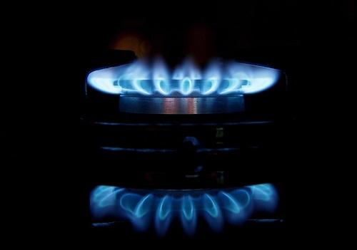 cene plina